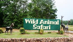 WildAnimalSafari